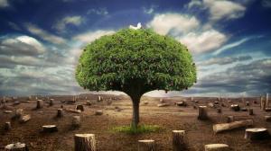 1329744-surviving-apple-tree[1]