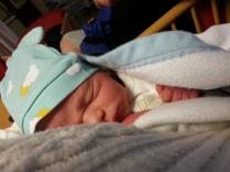 Caspian som nyfödd